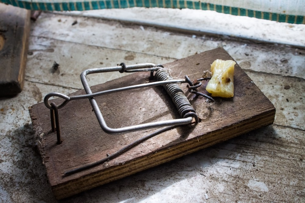 Destinations: Beware the better mousetrap fallacy