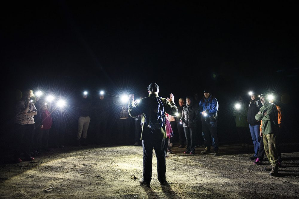 Bay of Plenty visitors and locals enjoy Whakatane Kiwi Trust's Night Walks during in the winter months.