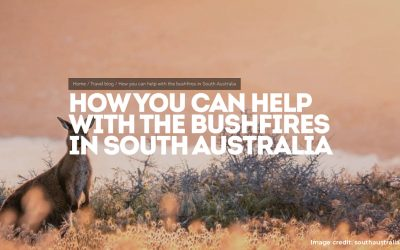 What South Australia's bushfire response can teach DMOs facing a crisis